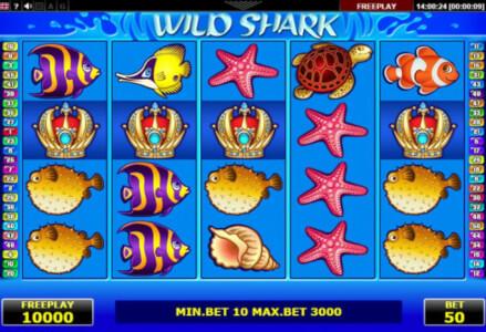wild shark screenshot