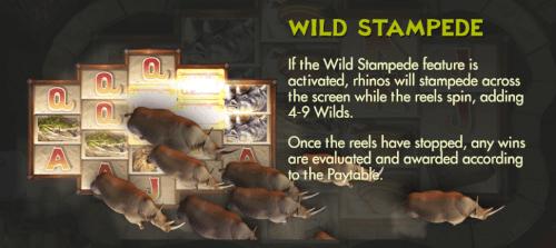 wild stampede feature