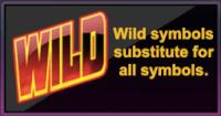 Wild Symbool met uitleg