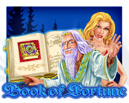 book of fortune gokkast