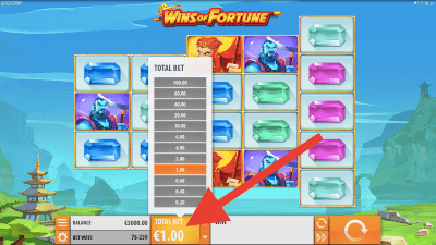 Bepaal je inzet op de Wins of Fortune slot