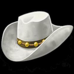 Dead or Alive cowboy hoed