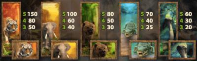 Jungle Spirit: Call of the Wild symbolen