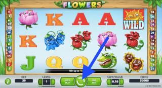 Speel Flowers