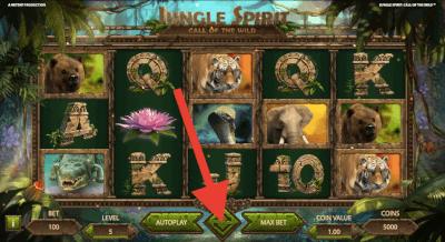 Speel Jungle Spirit: Call of the Wild
