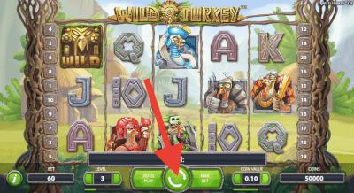 Speel Wild Turkey