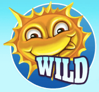 Zonnetje Wild