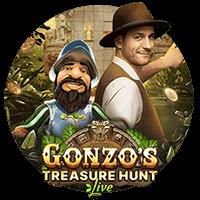 Gonzo's Treasure Hunt