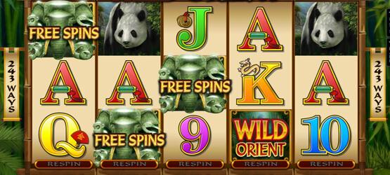 Slots met gratis spins
